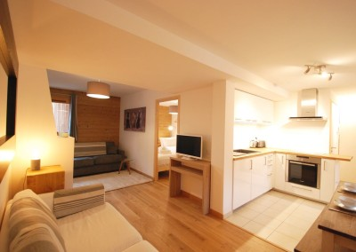 Morgan Jupe - Apartment Florimont - Lounge:Kitchen - 01 (low res)