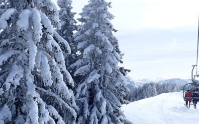 Five Great Reasons To Ski This January