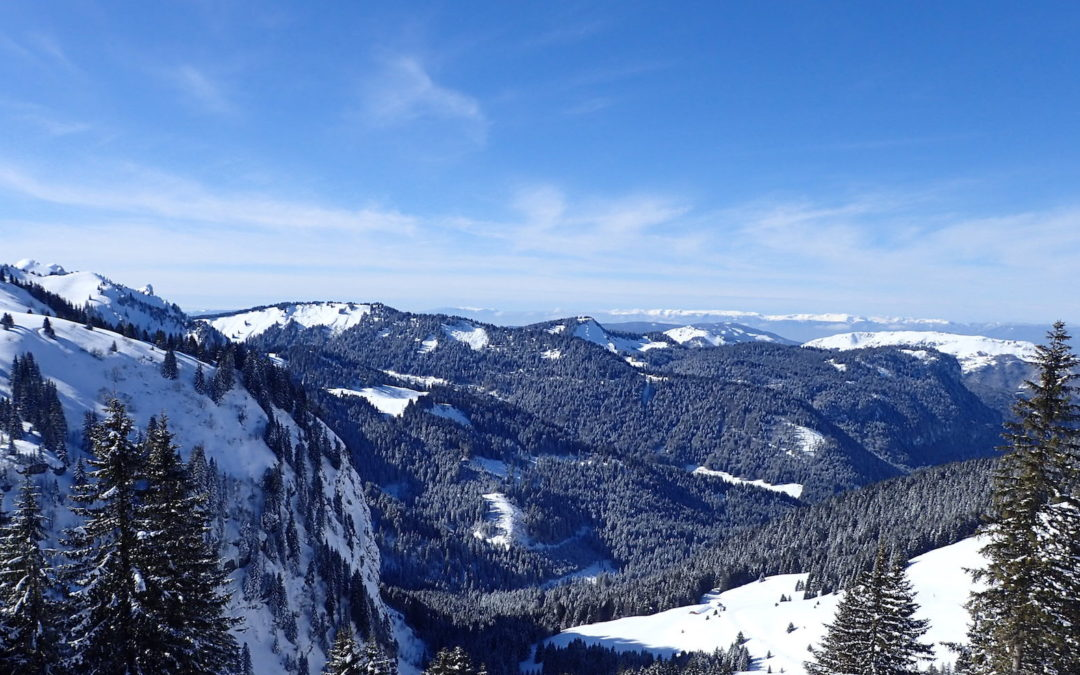 What's new in and around Morzine this Winter